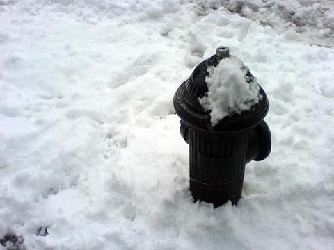snow222_2.jpg