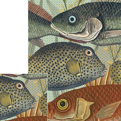fishpaper.jpg