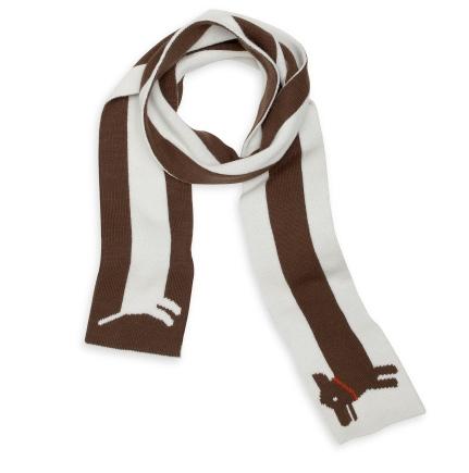 dachshundscarf